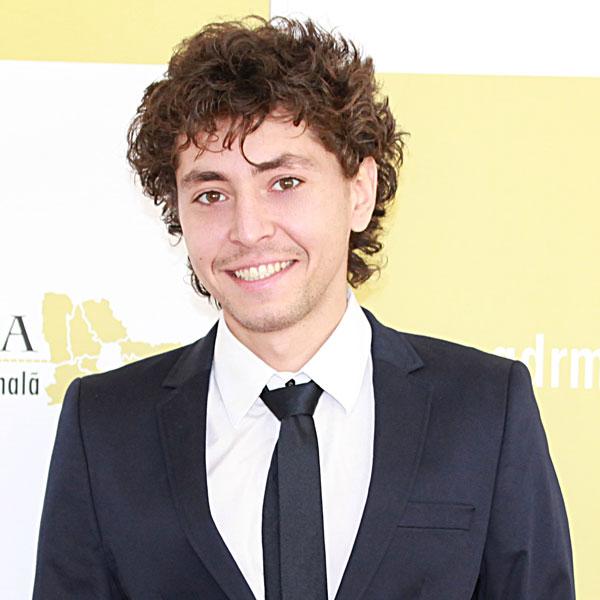 Adrian Emanuel Păun, Expert