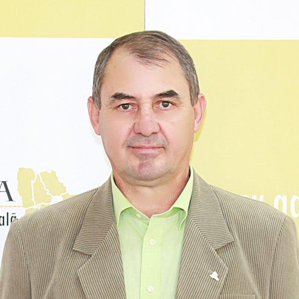 Dorel Vasile, Serviciul Administrativ