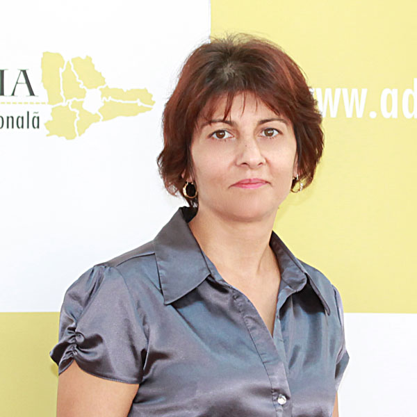 Emilia Orlandea, Serviciul Administrativ
