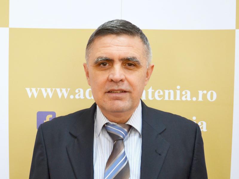Mircea Coman, Expert
