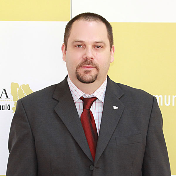 Mircea Marinache, Expert