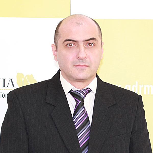 Silviu Stan, Expert