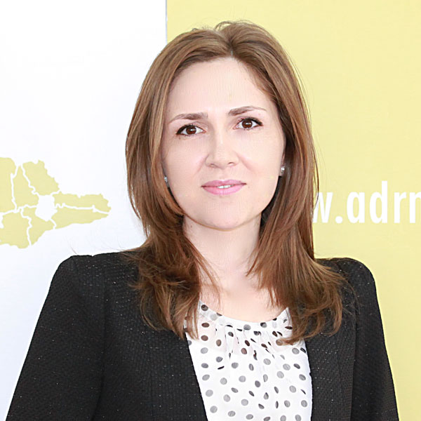 Angelica Dinu, Expert