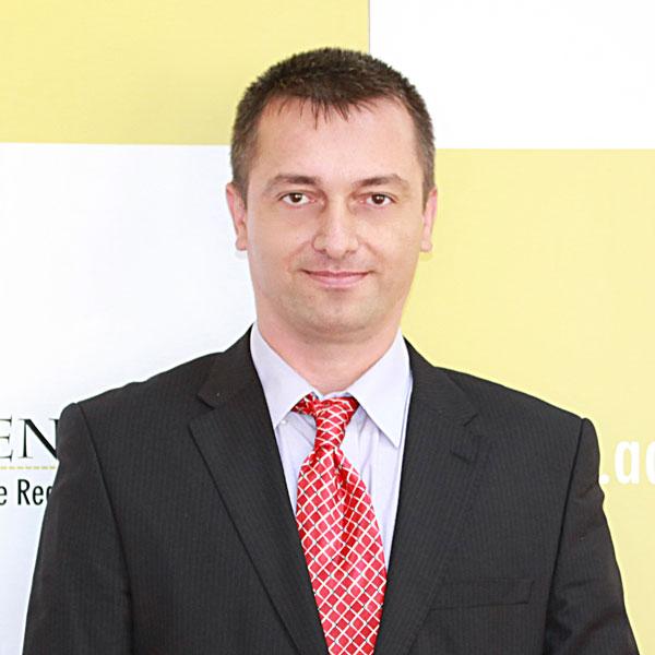 Aurelian Moroianu, Expert