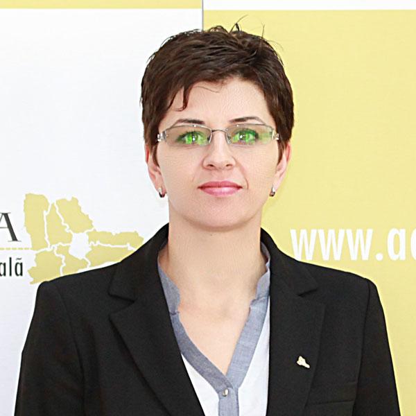 Corina Cristache, Expert