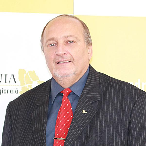 Dragomir Scripcă, Expert