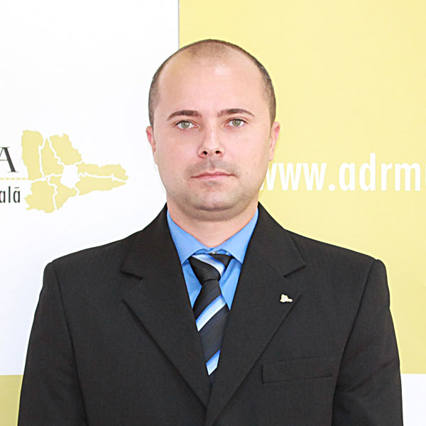 Florentin Georgescu, Expert