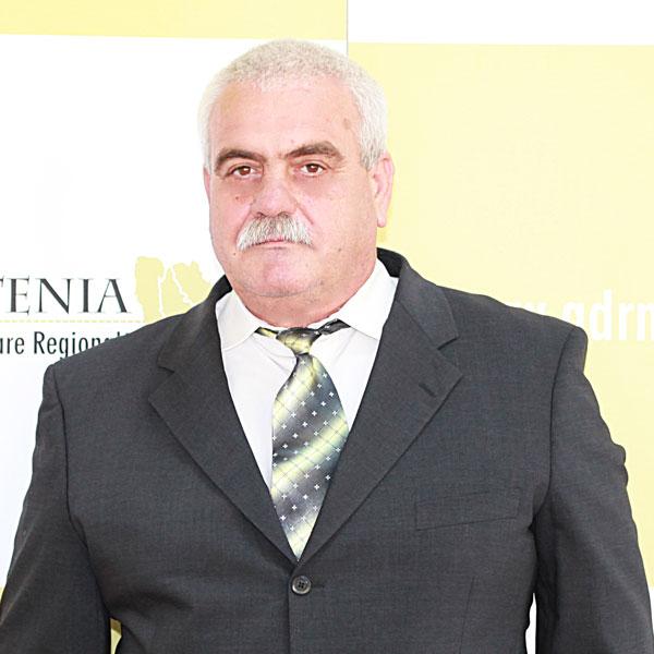 Gheorghe Pascu, Expert