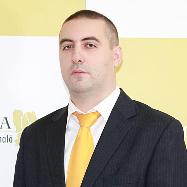 Ionuț Vișan, Expert