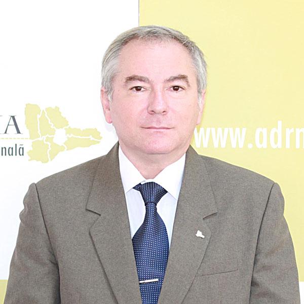 Laurențiu Rodean, Expert SMIS