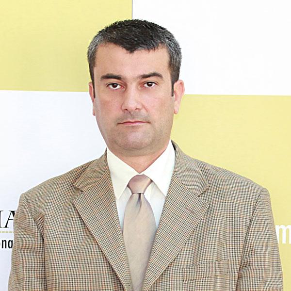 Marian Gradea, Expert
