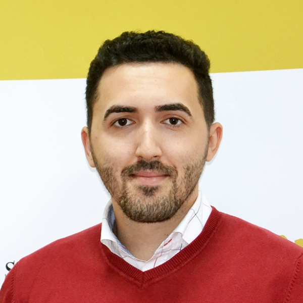 Răzvan Constantin Tilică, Expert SMIS