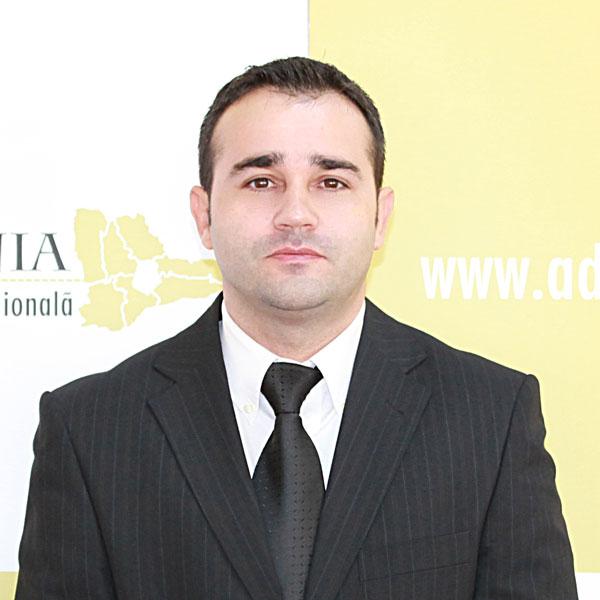 Silviu Mitrea, Expert