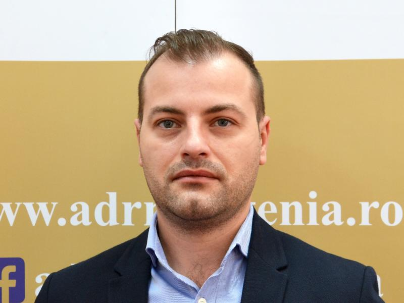 Ninel Vlaicu, Expert