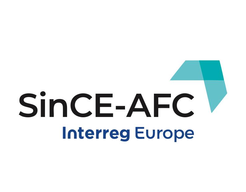 Import Workshop în cadrul proiectului SinCE-AFC