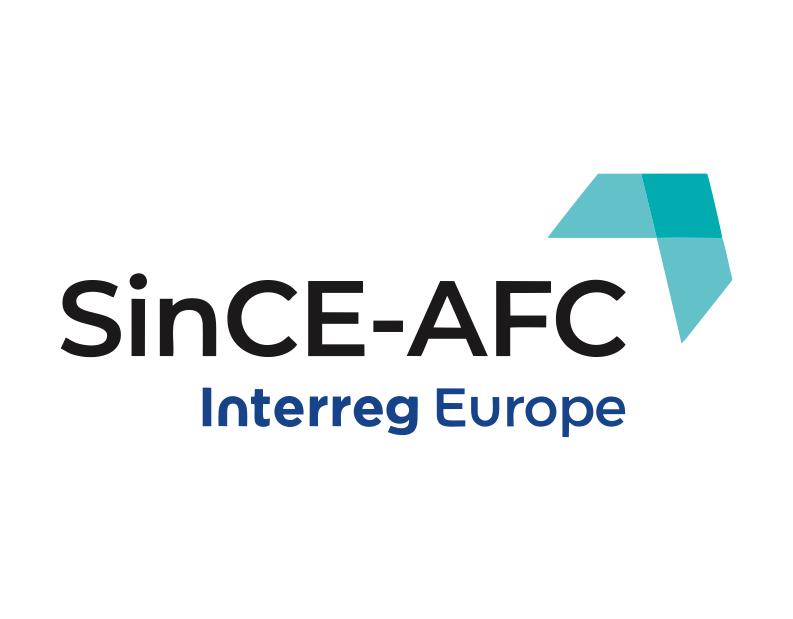 Agenția pentru Dezvoltare Regională Sud Muntenia organizează un Import Workshop în cadrul proiectului SinCE-AFC